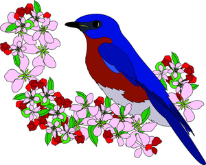 Songbird clipart #16, Download drawings
