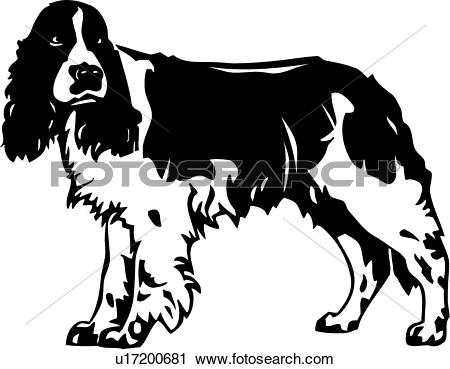 Spaniel clipart #17, Download drawings