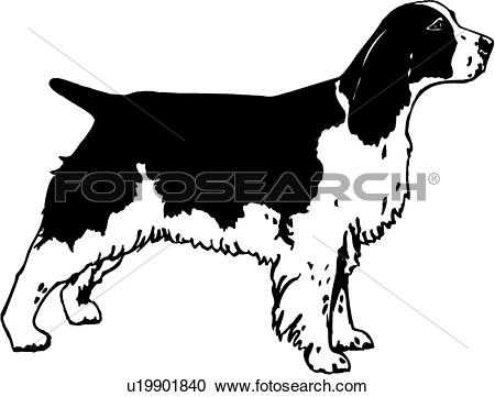 Spaniel clipart #10, Download drawings
