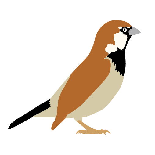 Sparrow clipart #6, Download drawings