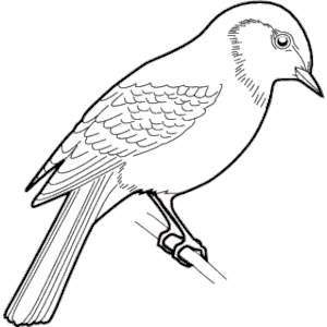 Sparrow clipart #5, Download drawings