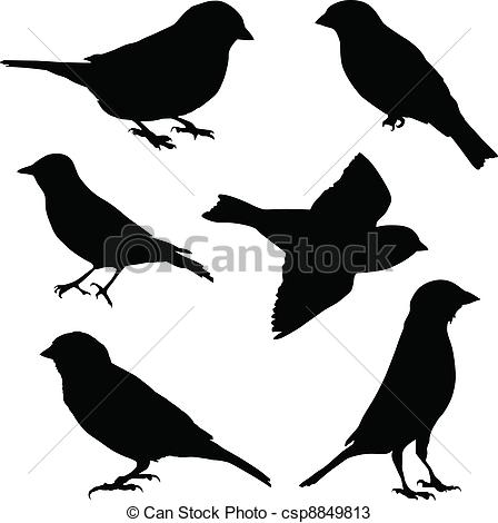 Sparrow clipart #4, Download drawings