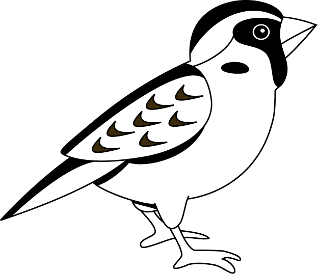 Sparrow clipart #8, Download drawings