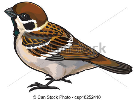 Sparrow clipart #9, Download drawings