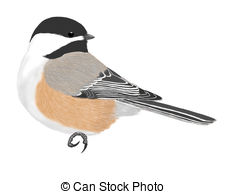 Sparrow clipart #13, Download drawings
