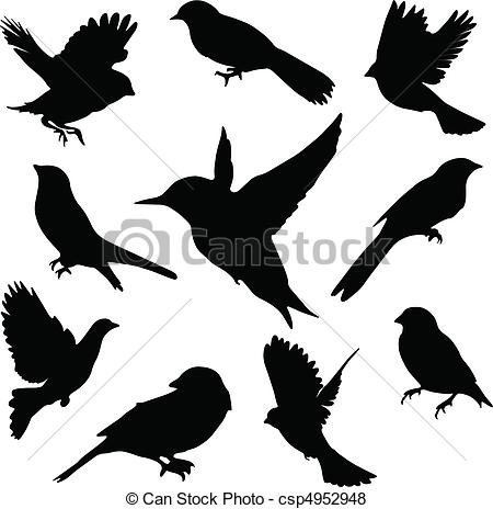 Sparrowhawk clipart #11, Download drawings