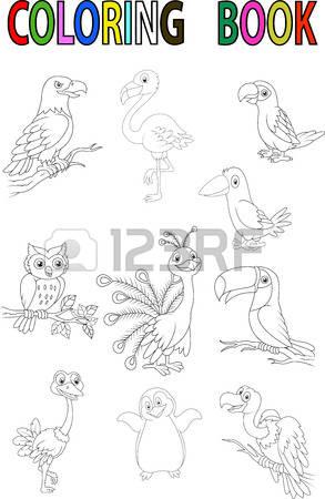 Sparrowhawk coloring #19, Download drawings