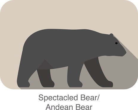 Spectacled Bear clipart #11, Download drawings