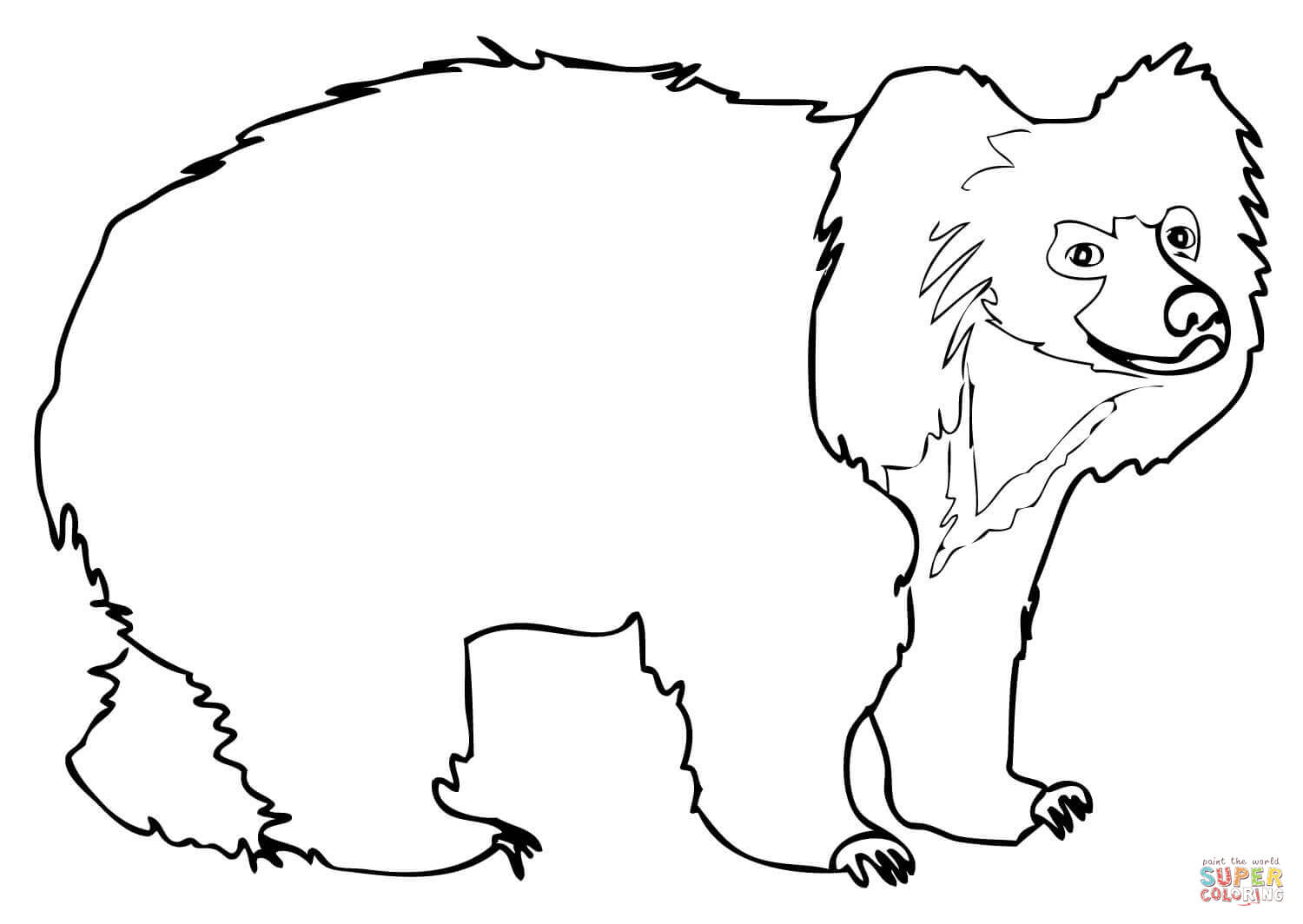 Spectacled Bear clipart #18, Download drawings