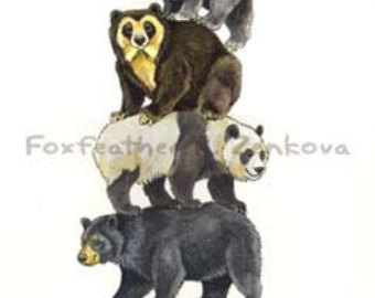 Spectacled Bear clipart #3, Download drawings
