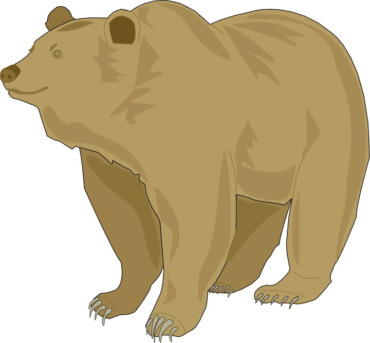 Spectacled Bear clipart #9, Download drawings