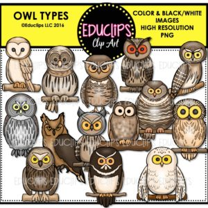 Spectacled Owl clipart #1, Download drawings