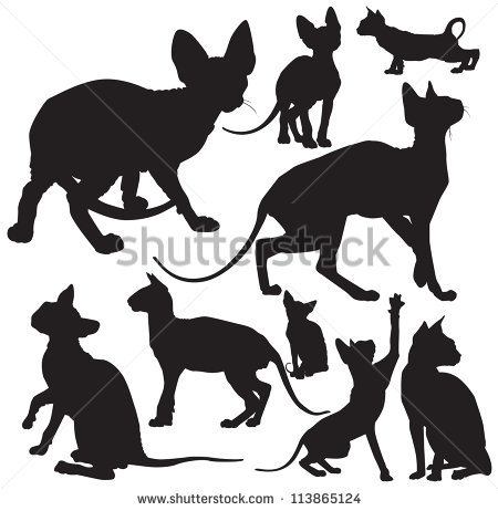 Sphynx Cat clipart #19, Download drawings