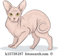Sphynx Cat clipart #7, Download drawings