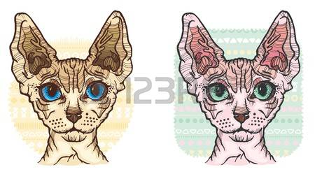 Sphynx Cat clipart #13, Download drawings