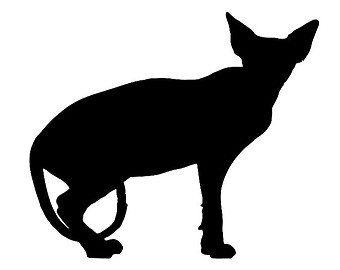 Sphynx Cat clipart #11, Download drawings