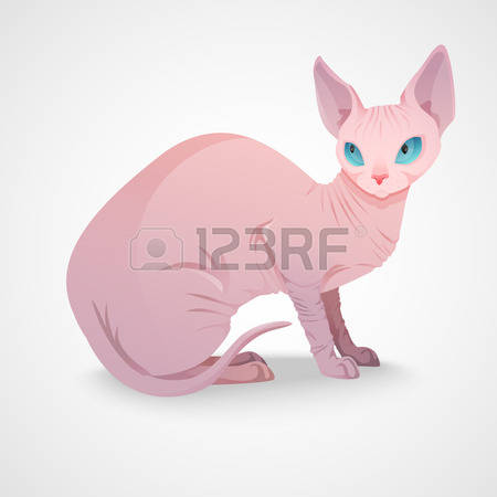 Sphynx Cat clipart #15, Download drawings