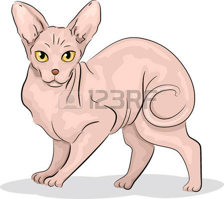 Sphynx Cat clipart #6, Download drawings