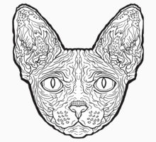 Sphynx Cat coloring #8, Download drawings