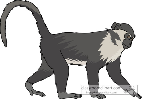 Spider Monkey clipart #1, Download drawings