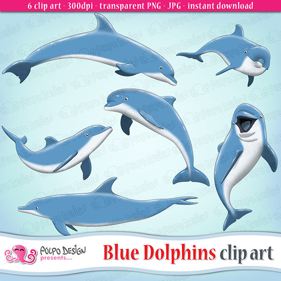 Spinner Dolphin clipart #9, Download drawings