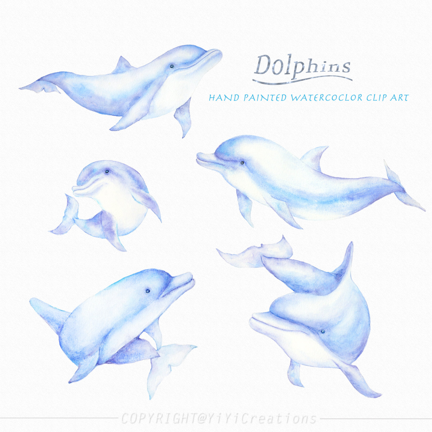 Spinner Dolphin clipart #13, Download drawings