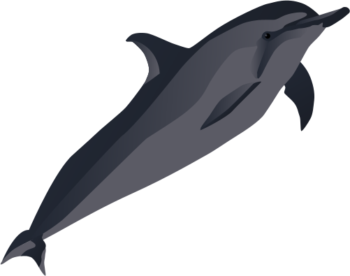 Spinner Dolphin svg #19, Download drawings