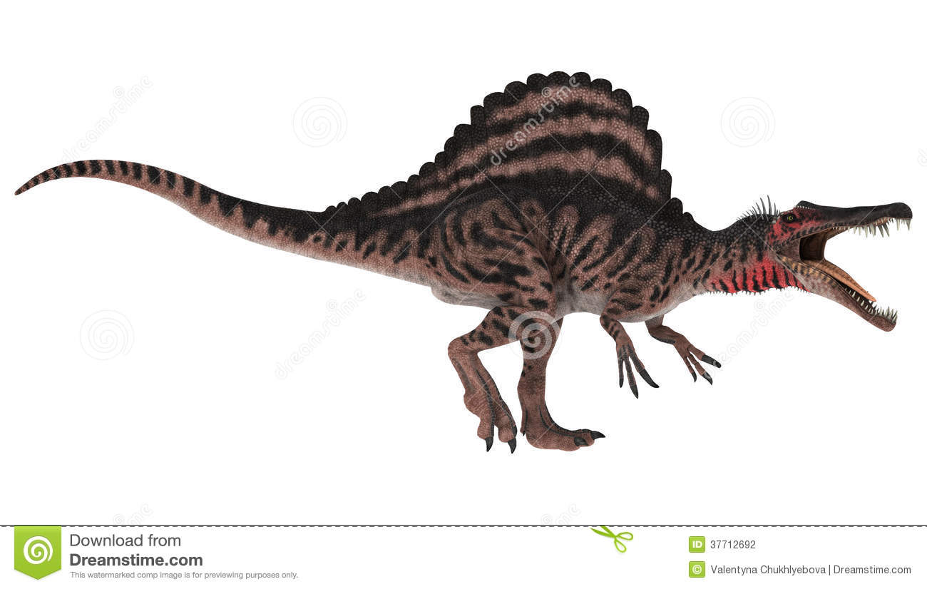 Spinosaurus clipart #11, Download drawings