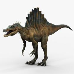 Spinosaurus svg #9, Download drawings