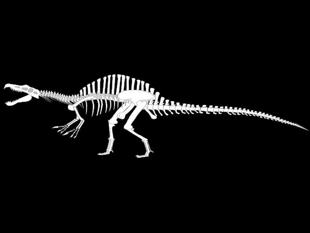 Spinosaurus svg #18, Download drawings