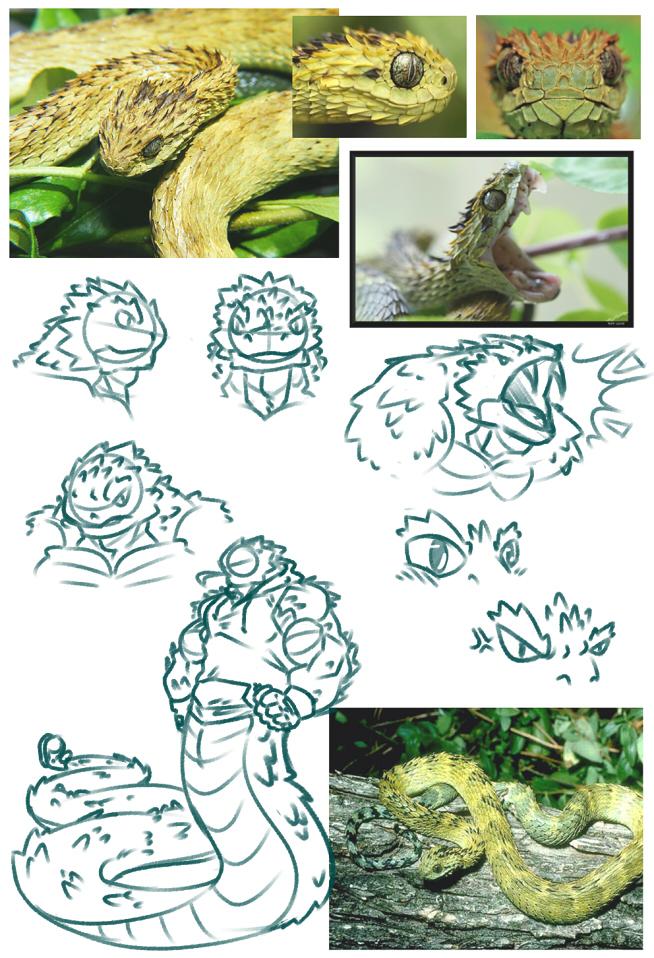 Spiny Bush Viper svg #8, Download drawings