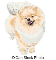 Spitz clipart #3, Download drawings