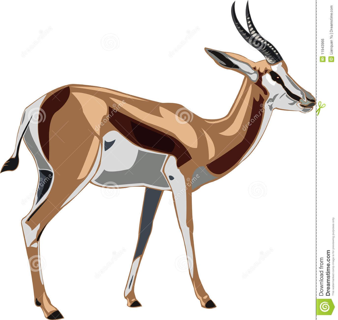 Springbok clipart #1, Download drawings