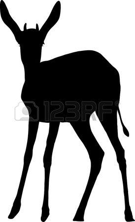 Springbok clipart #7, Download drawings