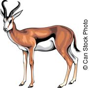 Springbok clipart #2, Download drawings