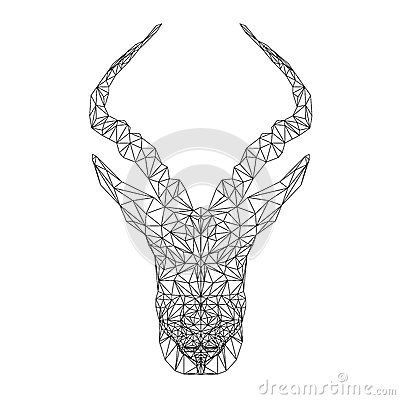 springbok coloring download springbok coloring. Black Bedroom Furniture Sets. Home Design Ideas
