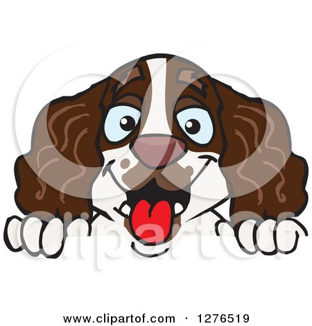 Springer Spaniel clipart #1, Download drawings