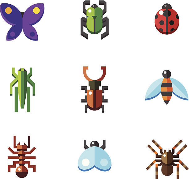 Squash Bug clipart #10, Download drawings