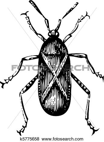 Squash Bug clipart #18, Download drawings