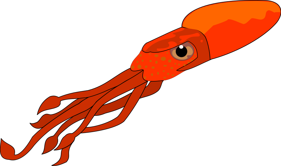 Squid clipart #9, Download drawings