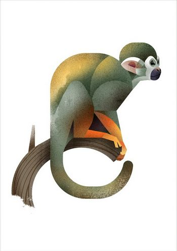 Squirrel Monkey clipart #7, Download drawings