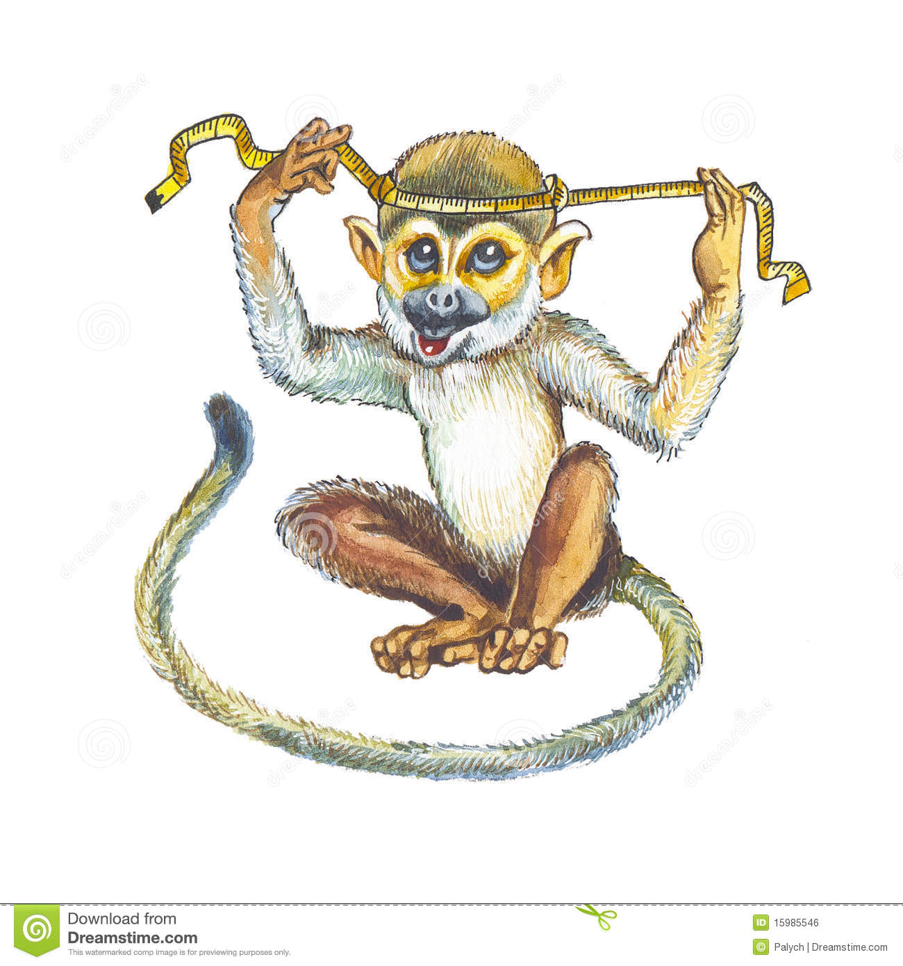 Squirrel Monkey clipart #10, Download drawings