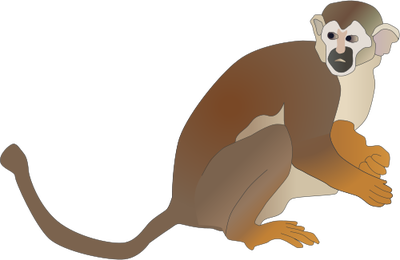 Squirrel Monkey svg #19, Download drawings