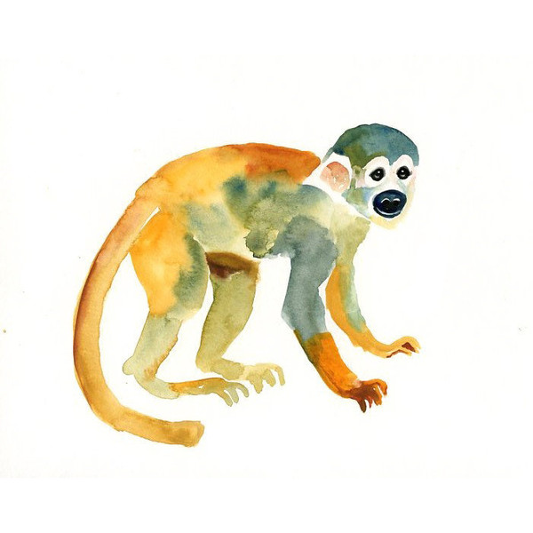 Squirrel Monkey svg #3, Download drawings