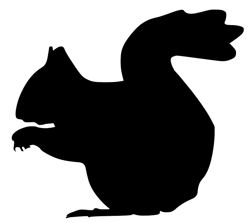 Squirrel svg #1, Download drawings