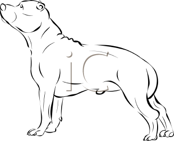 Staffordshire Bull Terrier clipart #11, Download drawings