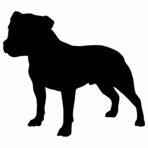 Staffordshire Bull Terrier clipart #18, Download drawings