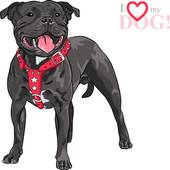 Staffordshire Bull Terrier clipart #20, Download drawings