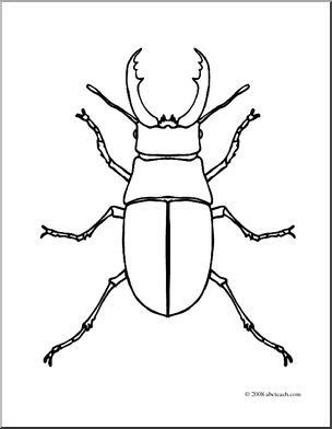 Stag Beetle clipart #2, Download drawings