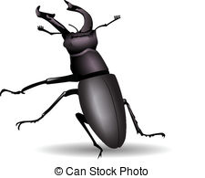 Stag Beetle clipart #19, Download drawings